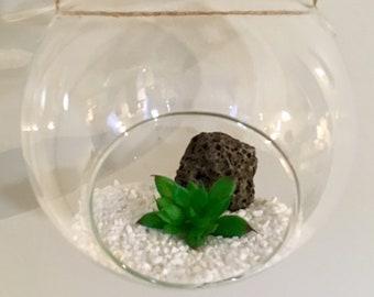 Succulent Terrarium- (Self assembly)