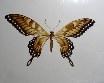 Butterfly coffee painting