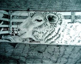animal wall art under 15, farm sheep barnyard animals, gifts under 15