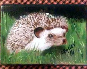 Hedgehog ACEO, small portrait of pet , aceo magnet, aceo on easel, art trading card, collectible art, small art, acrylic, hedgehog