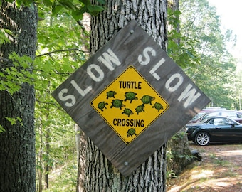 Photo magnet - Turtle Crossing Sign