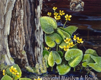 PRINT - WILDLIFE - DUCK; Merganser chick, water, flowers,marsh marigolds, cedar tree, nature