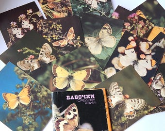 Soviet postcards butterflies Set of 16 Vintage Soviet Prints Gift idea USSR postcards Moths Insects Entomology Natural History Cards