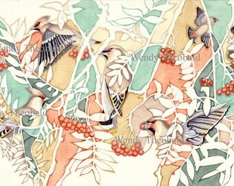 A Waxwings Fortune, waxwing, berries, winter, autumn, flying birds, wildlife, rowan tree