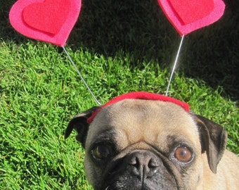 Valentines day HEART HAT for pets all sizes