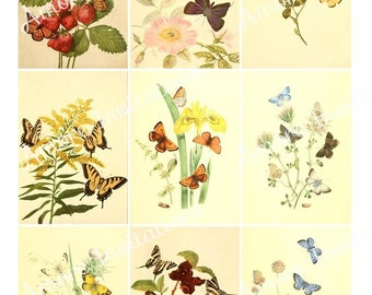 Digital Clip Art Vintage Butterflies  Butterfly Collage Sheet Decal ATC  JPEG  PDF  Instant Download  Downloadable  Cu Use  Commercial Use