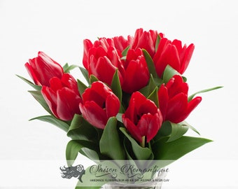 Bouquet Red Tulips - Polymer Clay Flowers - Mothers Day Gift for Women Gift For Her Red Flower