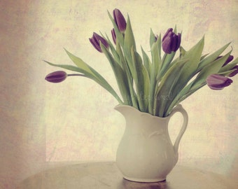Purple Tulips Fine Art Photography Shabby Chic Floral Romantic Feminine Eggplant Plum Cream White Ivory Green Home Decor Wall Art