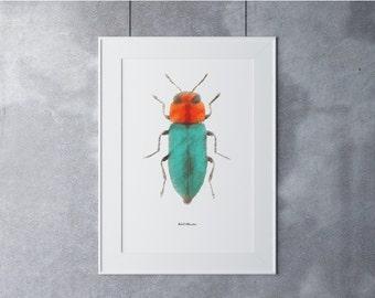 Beetle Digital Art, Digital Art Print, Digital Art Download, Digital Graphics,Printable Art,Digital Print, Nature Art Print,Turquoise Orange