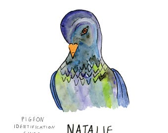Natalie the Pigeon: Animal Identification Guide Art Print