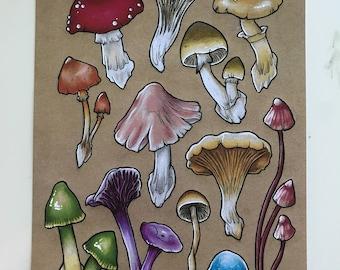 A4 Fungi Flash Print