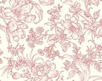 10 Yards inStock- Clothworks - Raspberry and Cream by Marsha McCloskey - 100% Cotton