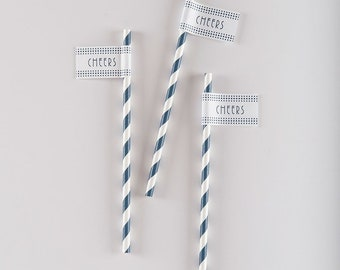 Aspen Striped Drink Straw with Flag