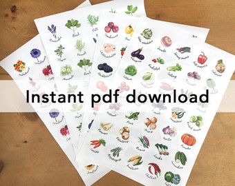 Pdf file of 4 x sticker sheets, for home printing. Veg, fruit, herbs and flowers. For circular stickers on A4 and US letter.