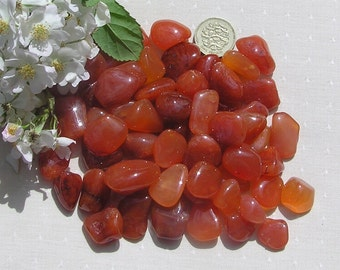 12 Carnelian Crystal Tumblestones, Crystal Collection, Orange Crystals, Chakra Crystals, Meditation Stone, Cancer, Aries, Leo, Virgo, Agate