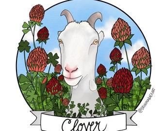 Clover - Cute rescue goat - be vegan