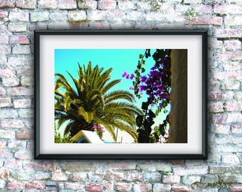 Instant download, palm tree, photo download, art, digital art, printable art, digital photo, wall decor, digital download, downloadable art,