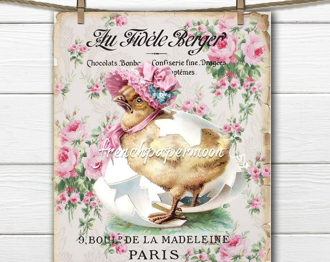 French Shabby Easter Chick Large Image Instant Digital Download Printable Antique Style Chick Graphic Transfer
