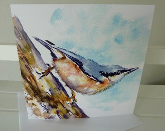 NEW! Larger Card  - Nuthatch - Greetings Card -