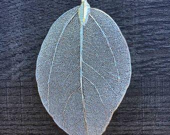 Silver/gold leaf necklace