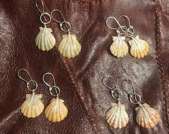 Real hawaiian sunrise shell earrings on sterling silver