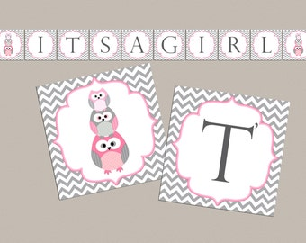 Girl Baby shower banner Its a girl owl baby shower decorations baby shower banner owl baby shower decor (534)