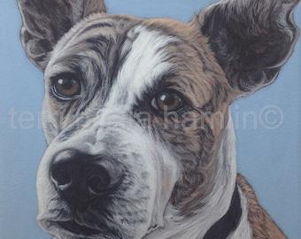 Dog Portrait, 8x10 Pet Portrait, Custom Pet Portrait, Painted Pet Portraits,Custom Dog Portrait, Pet Memorial, Fathers Day Gift