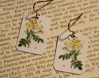 Redoute' earrings Botanical illustration art mixed media jewelry