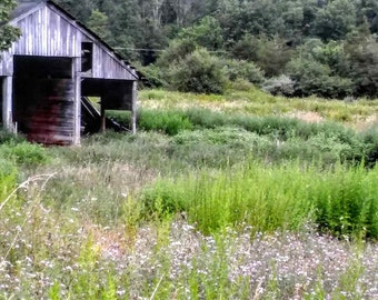 Old Barn In the Field Photo