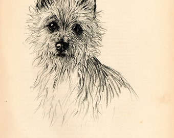 "1938 Vintage DOG PRINT from a book of Sketches by K.F. Barker ""The gay little Cairn!"""