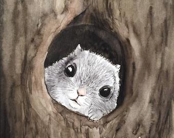 A flying squirrel postcard