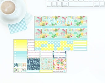 Erin Condren Vertical Monthly Kit - In Summer - Any Month! *NEW PREMIUM PAPER!*