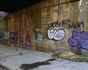 New York City Photo: South Bronx graffiti with pidgeons foraging for food before winter comes - desolate NYC- Sobro