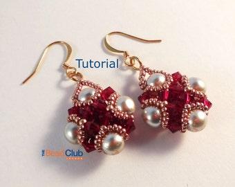 Beaded Earring Patterns - Beaded Earring Tutorial - Beading Patterns and Tutorials - Beadweaving Tutorials - Beadwork - PDF - Amira Earrings