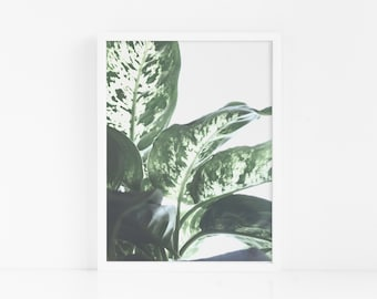 Scandi Leaves FRAMED Wall Art|Leaf Poster|Home Decor|Tropical Prints|Minimalist Poster|Poster Print|Bedroom Wall Art|Wall Decor