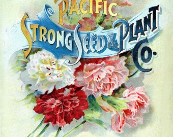 Dierssen 1898 Pacific Strong Seed and Plant  Seed Company Bright Colorful Print  Vintage Reproduction Print 11 x17