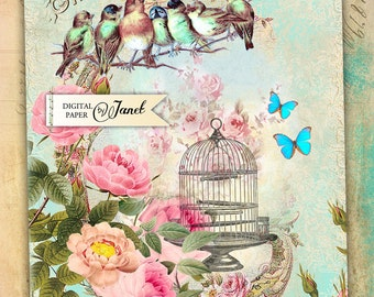 Bird Beauty - Large Image - digital collage sheet - Printable Download