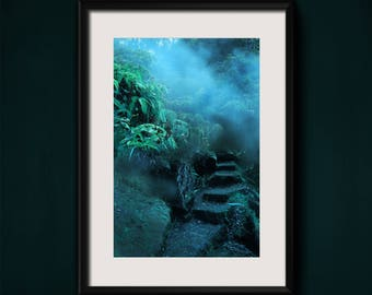 Fine Art Photograph Hawaiian Tropical Hidden Steps