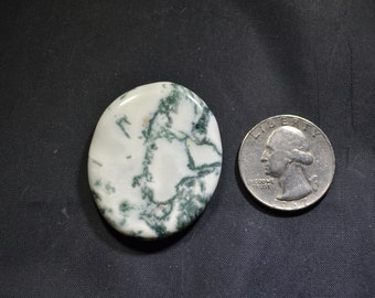 Green Tree Agate free form Cabochon