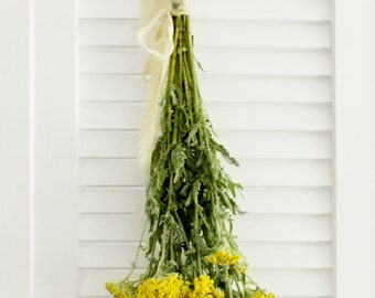 Yarrow Cottage Yellow 8-10 stems