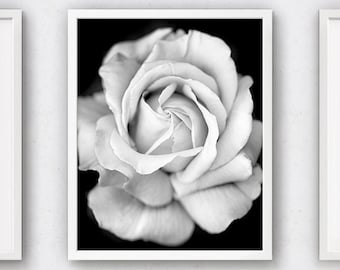 Flower Photograph, Rose Artwork, White Print, Black Printable, Roses Art, Macro Photography, Floral Decor, Rose Art Print, Romantic Gift Her