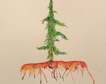 Pine 12x18 Inch Watercolour