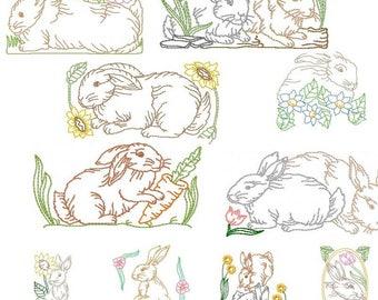 Rabbits BD 579