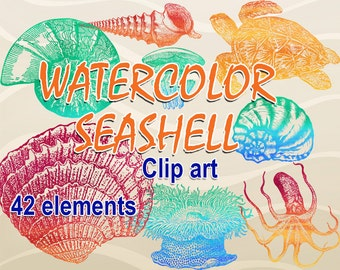 Digital Watercolor Sea Shells Clipart transparent, printable Digital Scrapbooking, Seaside Clipart, Marine Digital Collage, Instant Download