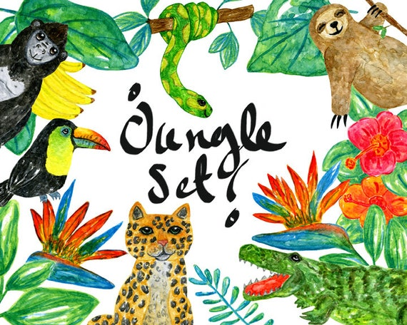 watercolor jungle clipart jungle clipart jungle animal rh etsy com jungle clip art free downloads jungle clipart background