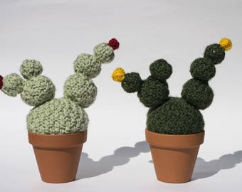 The mixed - Cactus made of wool - knit, handmade, interior design, textile, green art, plant eternal
