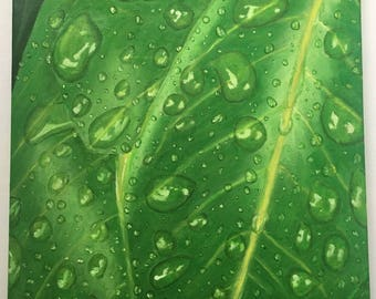 Raindrops of Leaves Original Oil Painting 16x16