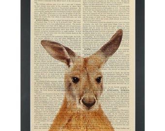 Kangaroo Outback Australia Dictionary Art Print