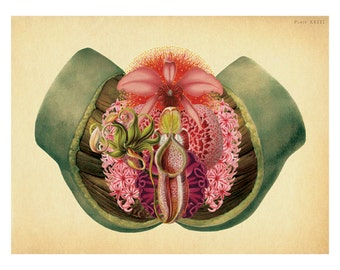 tropical erotic green goddess botanical vagina art print   antique female anatomy fantasy surrealism surreal lady garden erotica flowers