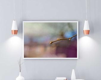 Photography Wall Art Poster Home Decor: New Life II